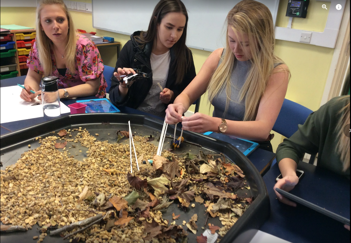 Trainee teachers at the University of Northampton reflect upon STEAM through the theme of rescue robots.